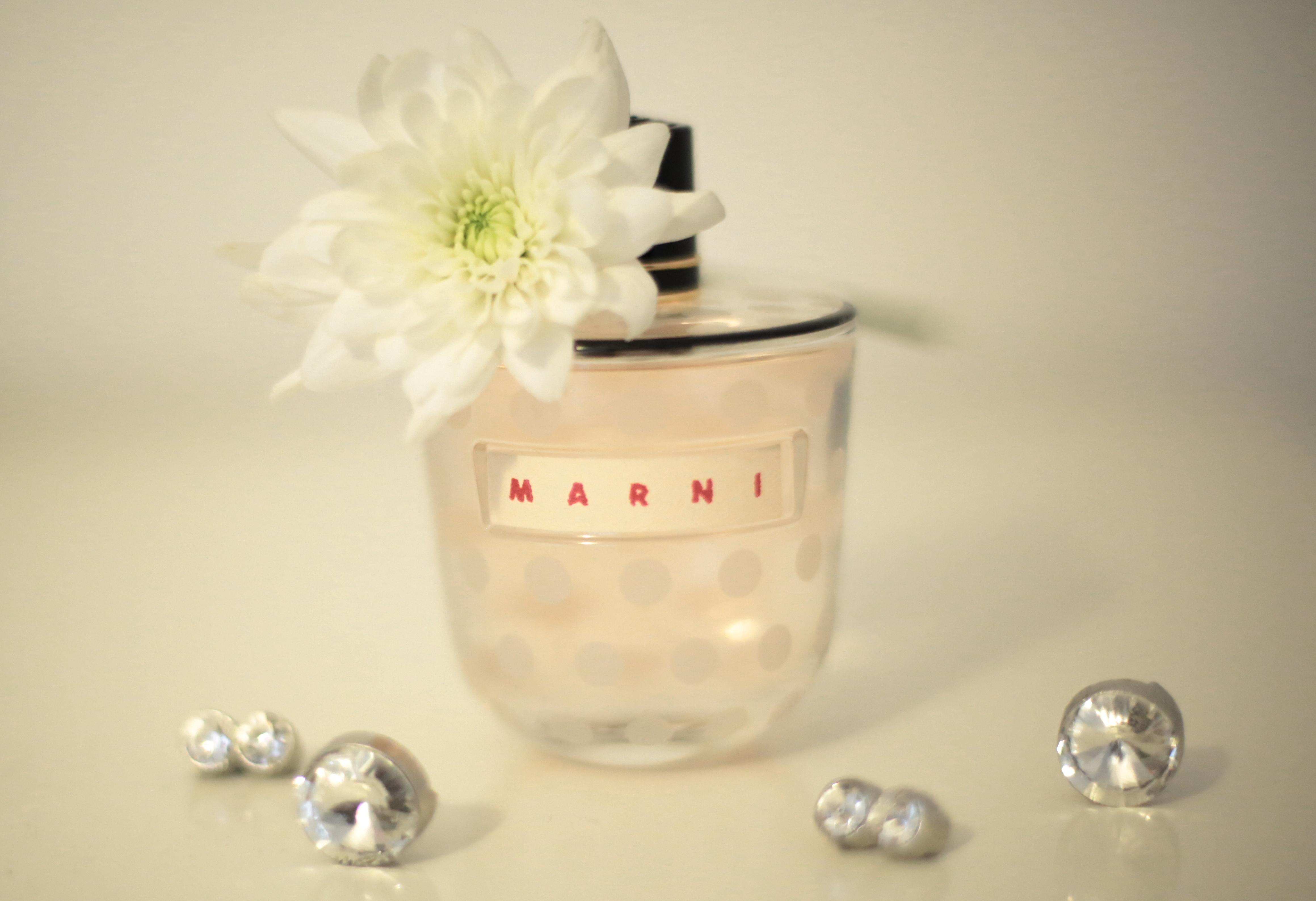 Marni Rose Review